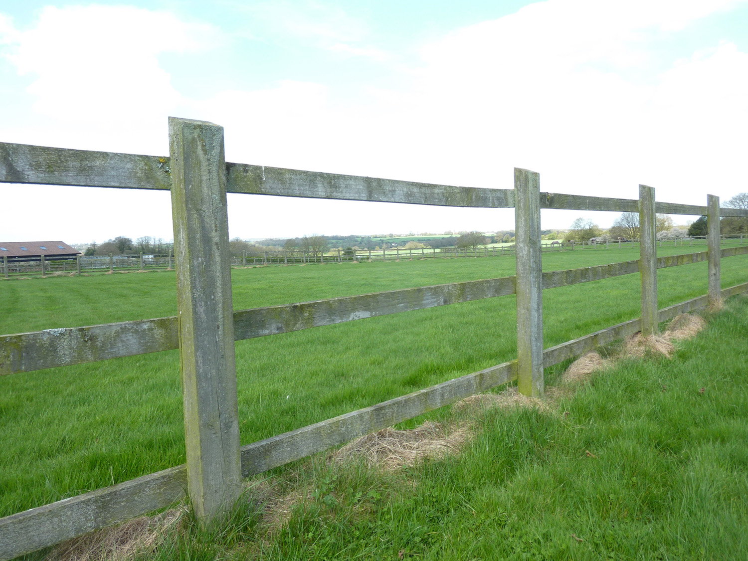Post and Rail Paddock Fencing